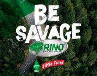 Rino   Little Trees